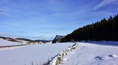 Champ de neige (Diegojack) Tags: paysages valledejoux hiver neige lelieu champ traces