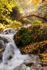 Ro Cerezuelo en otoo (Cristbal Jorge Ban) Tags: cazorla andalucia rio puente otoo river bridge autumn