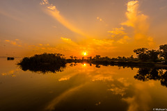 Last rays (Mohsan Raza Ali Baloch) Tags: pakistan mohsan islamabad rawal lake nikon d750 sunset sunrise evening morning water birds boats sun clouds cloud low light orange high iso sky storm going down reflection reflections flaps ngc