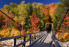 Across the bridge (Tim Ravenscroft) Tags: newhampshire bridge suspension lincoln woods pemigawasset river nh new hapmshire usa autumn fall