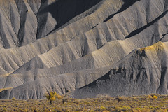 Slopes of Gold (Bob Bowman Photography) Tags: utah yellow slopes mountains gray gold southwest trees sage brush shadows light detail desert autumn fall