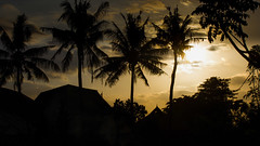 04092013-IMG_7359 (christophecavelli) Tags: landscape nature bali travel