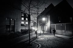Cold Light (Gilderic Photography) Tags: liege belgium belgique belgie morning nuit matin darkness lights silhouette canon g7x gilderic city
