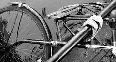 Abandonada (Lamevagaleria) Tags: blackwhite bw blancoynegro blackandwhite monocromtico amsterdam netherlands eindhoven canales river travel viaje viatge reportajedeviaje bicicleta ruinas rota holidays holiday bici vehculo bicycle olympus e30