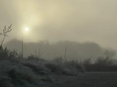 Nebel-Nachmittag in Niendorf // foggy November day (kim.foto) Tags: niendorf nebel machmittag fog balticsea ostsee