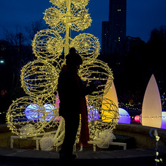 Thinking Silhouette (vhdragon2112) Tags: pittsburgh phipps christmas nikon d610 silhouette lights