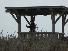 Barry, testing wind speed (Aldene.Gordon) Tags: asilomar pacific grove monterey montereybayarea
