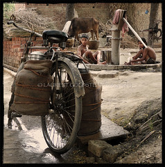 The Extraordinary in the Ordinary (designldg) Tags: india uttarpradesh village countryside sepiaandcolor square composition reportage timeless nostalgia waterpomp children childhood child cow milk bicycle milkmanbicycle photography culture atmosphere soul indiasong travel laurentgoldstein streetphotography streetlife photojournalism naturallight celebratehumanity people poetry panasonicdmcfz18