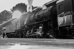 Siena (Domenico A.) Tags: siena toscana tuscany treno train station stazione nikon nikond610 tamronsp2875f28 travel viaggio partenza arrivo old