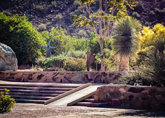 Taliesin West - Frank Lloyd Wright House (J&E Adventures) Tags: desert exploration scottsdale wanderlust summer exploreeverthing taliesinwest statue travel sony phonephotography iphone architecture arizona sonyphotography traveling summersun franklloydwright unitedstates us