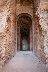 Into the Arena! (silverfox_hwz) Tags: campania capua santamariacapuavetere amphitheatre anfiteatro ancientcapua gladiator gladiatormuseum