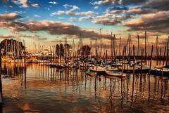 Reflejos en el puerto - Reflections in the harbor (celta4) Tags: trees argentina rio clouds reflections river puerto harbor buenosaires arboles nubes sailboats olivos reflejos veleros riodelaplata