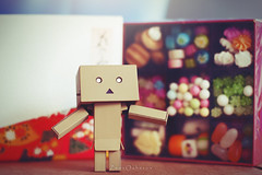 (vovka43rr) Tags: anime japanese robot amazon box manga hobby cardboard domo kawaii akihabara kaiyodo photooftheday picoftheday kotobukiya yotsuba danbo toyphotography revoltech danboard cardbo toyography vovka43r toystagram danbothetraveler