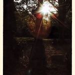 rays of sun light