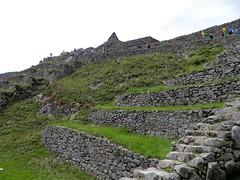 Machu Picchu-156