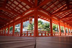 Itsukushima shrine -  (gurafu) Tags: shrine hiroshima miyajima itsukushimashrine  itsukushima    setouchi   itsukushimashire