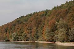 Rhein ( Hochrhein - Fluss - River ) zwischen der B.ibermhli und D.iessenhofen an der Grenze vom Kanton Thurgau der Schweiz und Deutschland (chrchr_75) Tags: chriguhurnibluemailch christoph hurni schweiz suisse switzerland svizzera suissa swiss chrchr chrchr75 chrigu chriguhurni 1410 oktober 2014 rhein fluss river hochrhein albumrhein albumhochrhein oktober2014 hurni141012 rhin reno rijn rhenus rhine rin strom europa joki rivire fiume  rivier rzeka rio flod ro