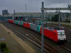 8 op een rij (Peter ( phonepics only) Eijkman) Tags: netherlands train ns transport nederland rail railway trains rails railways locomotives trein spoorwegen treinen lokken traxx nederlandse nederlandsespoorwegen llt locomotieven