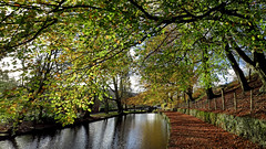 Autumn Colours in Saddleworth (Craig Hannah) Tags: uk autumn england reflection canal leaf colours yorkshire oldham beech narrowboat saddleworth greatermanchester westriding uppermill huddersfieldcanal craighannah