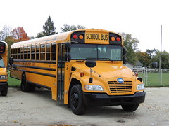 White Pigeon Community Schools (Nedlit983) Tags: blue school bus bird vision
