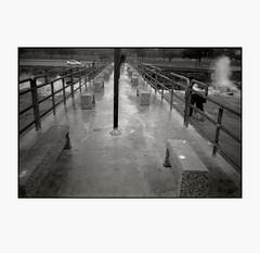 Edgewater (R. Drozda) Tags: ohio bw storm film pier lakeerie cleveland trix greatlakes olympusxa2 edgewaterpark crashingwave drozda