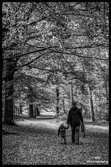 Enjoying being together (Nils5481) Tags: autumn bw white black fall forest walking woods child wandelen herfst mother kind bos zwart wit moeder