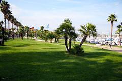Antibes XXXV. (gambit03) Tags: park city france palms frankreich antibes oldcity innenstadt palmen vros franciaorszg plmk