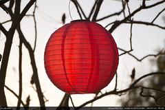 Red Light (Ludtz) Tags: light red circle lumière olympus boule rond m43 mft olympuspenepl2 ludtz mzuiko40150|456
