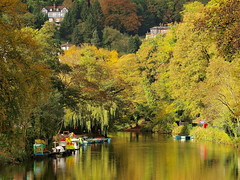 Autumn-mirror-river.