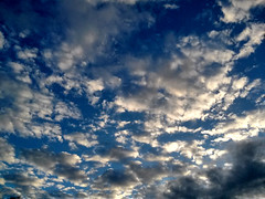 Sky is the limit (spicros78) Tags: blue weather mobile clouds flying high phone bluesky lg lgd605 lgl9ii