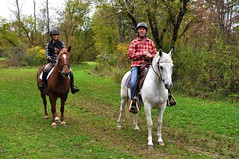 Horsing Around (CCC Photography) Tags: horses trail riding stable horseback