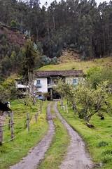 #casa #hacienda #galuay #nazon #biblian #ecuador #andes #adobe #eucalipto #teja #spanishtile  #old #house (mndezf) Tags: old house casa ecuador adobe andes spanishtile hacienda teja eucalipto nazon biblian galuay