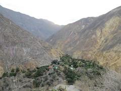 Colca Canyon-54