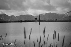 Mountain View (Florian Miller) Tags: 2014 hss