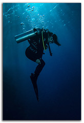 IMG_7076 (David Whistlecraft) Tags: underwater redsea scuba scubadiving marinelife underwaterphotography marinefish underwaterimages northernredsea mistralliveaboard