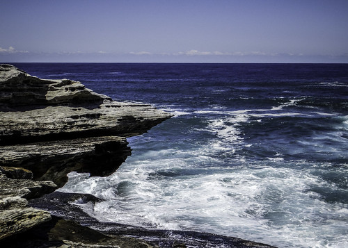 Bondi to Coogee Walk #17. Sydney