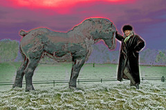 marion & horse (dick_pountain) Tags: horse grass bronze frost marion