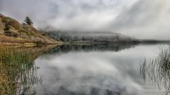 Foggy Lagoon (stephencurtin) Tags: california trees reflection water fog reeds coast foggy lagoon northern thechallengefactory