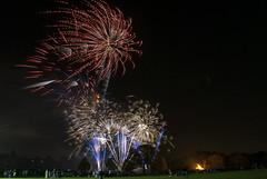 Firework Display (Louisa Giordano) Tags: fireworks bonfirenight morden fireworkdisplay mordenpark