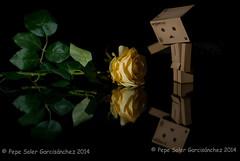 Farewell (Pepe Soler Garcisnchez) Tags: nikon mm nikkor 18 50 tere 2014 terin danbo nikkor50mm18 nikond200 danboard pepesoler josesoler jossoler garcisnchez garcisanchez pepesolergarcisnchez