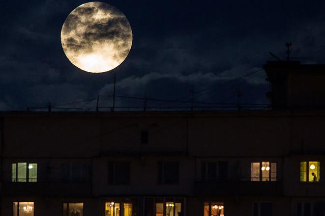 Астрономический феномен: Луна спустя 70 лет вновь будет «суперсветилом»