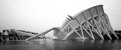 Insignificance (michel1276) Tags: calatrava valencia ciudaddelasartesydelasciencias spain spanien 7dwf einfarbig monochrome architektur architecture