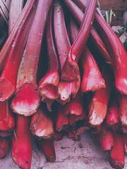 Rima Dadenji, Rhubarb is so beautiful in photography, 2015 (Rima Dadenji) Tags: red rhubarb nature soil ecology environment fromfarmtotable agriculture farming permaculture organicfarming organicagriculture vegetables fruits growing earth rimadadenji iphone5s iphoneography iphone
