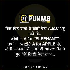 Joke Of The Day (Punjab News) Tags: joke punjabnews punjab news