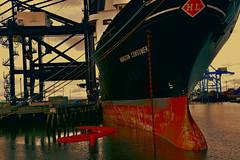 Port of Tacoma, Horizon Consumer Ship at Dock (Don Briggs) Tags: donbriggs nikond600 28300nikkorlens portoftacoma horizonconsumership