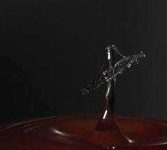 Droppe00831F (de98lip) Tags: highspeed cameraaxe water drop droplet watercollision liquid