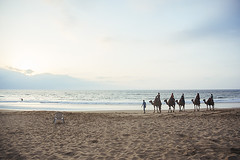 Camels on the beach - Tangier, Morocco (Naomi Rahim (thanks for 2 million hits)) Tags: tangier morocco northafrica africa 2016 travel travelphotography nikon nikond7200 wanderlust beach animals animal nature ride camel camels inarow clouds sky sand  anja mediterranean straitofgibraltar