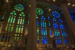 NH0A3601s (michael.soukup) Tags: barcelona sagradafamlia familia basilica church stainedglass color colorful windows nave interior gaudi churchoftheholyfamily catholicchurch artnouveau architecture neogothic spain catalonia