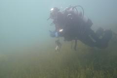 Lug mau dert... (habi) Tags: diving hausriff renzo thunersee