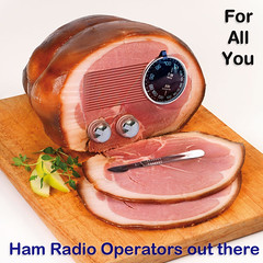 For All You Ham Radio Operators Out There (KAZVorpal) Tags: humor fun silly absurdity dadaism ham radio operators surgeon scalpel photoshop photoshopping pun operation butt ass smoked pork shank paronomasia calembour